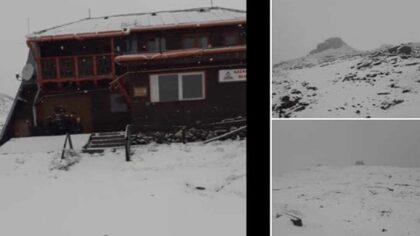 Video. A nins in toiul...
